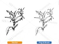 5002012-sketchy-plants-vector-and-photoshop-brush-pack-05_p011
