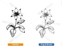 5002012-sketchy-plants-vector-and-photoshop-brush-pack-05_p012