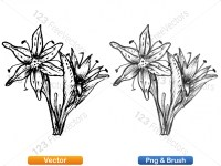 5003048-hand-drawn-sketch-flowers-vector-and-photoshop-brush-pack-01_p005