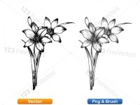 5003049-hand-drawn-sketch-flowers-vector-and-photoshop-brush-pack-02_p008