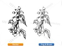 5003052-hand-drawn-sketch-flowers-vector-and-photoshop-brush-pack-05_p015