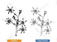 5003057-hand-drawn-sketch-flowers-vector-and-photoshop-brush-pack-10_p012