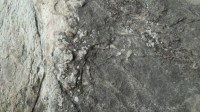 5051005-stone-texture-pack-02_p005