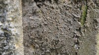 5051010-wet-stone-wall-textures-01_p008