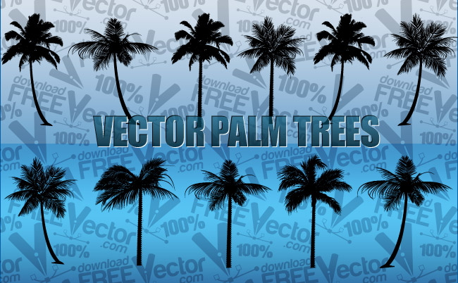 palm trees free vector 123freevectors