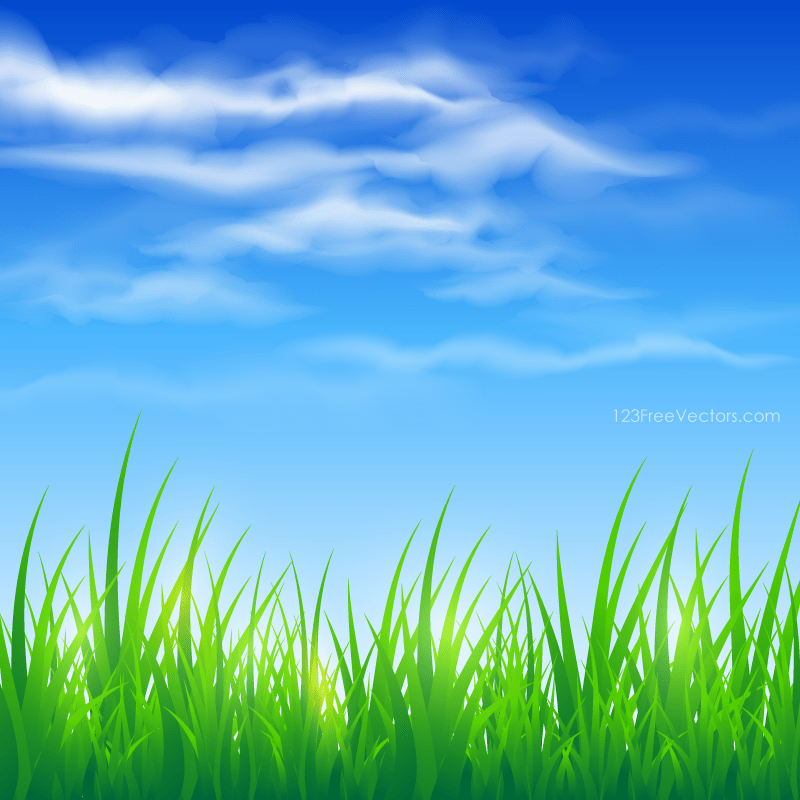Blue Sky and Green Grass Background 123Freevectors