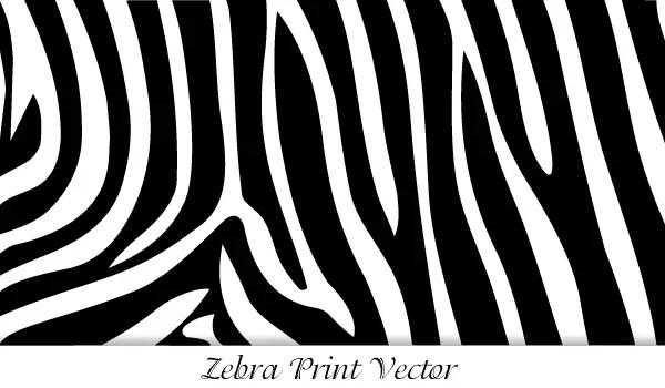 zebra print vector 123freevectors rh 123freevectors com zebra print vector free download zebra print vector image