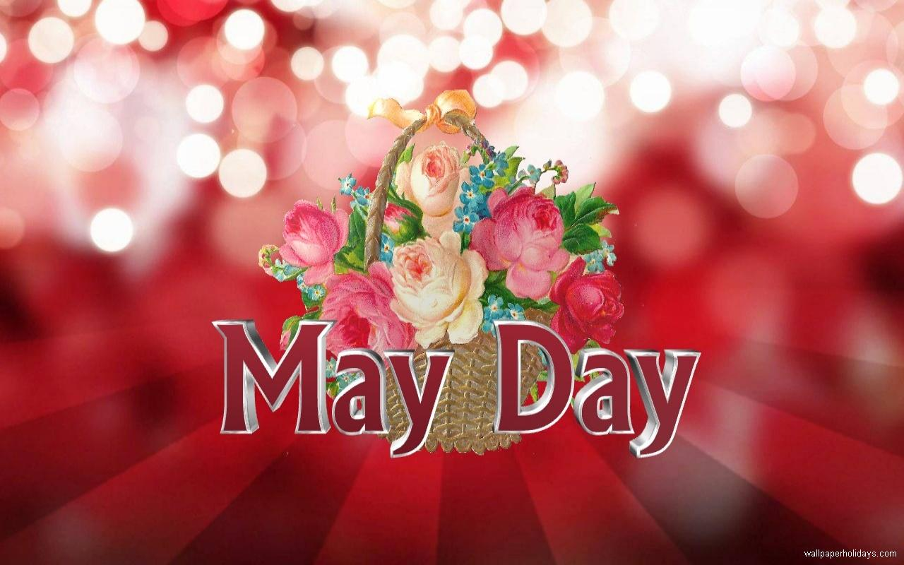 Cute Flowery Wallpaper May Day Gif Images Wishes Messages Whatsapp Status