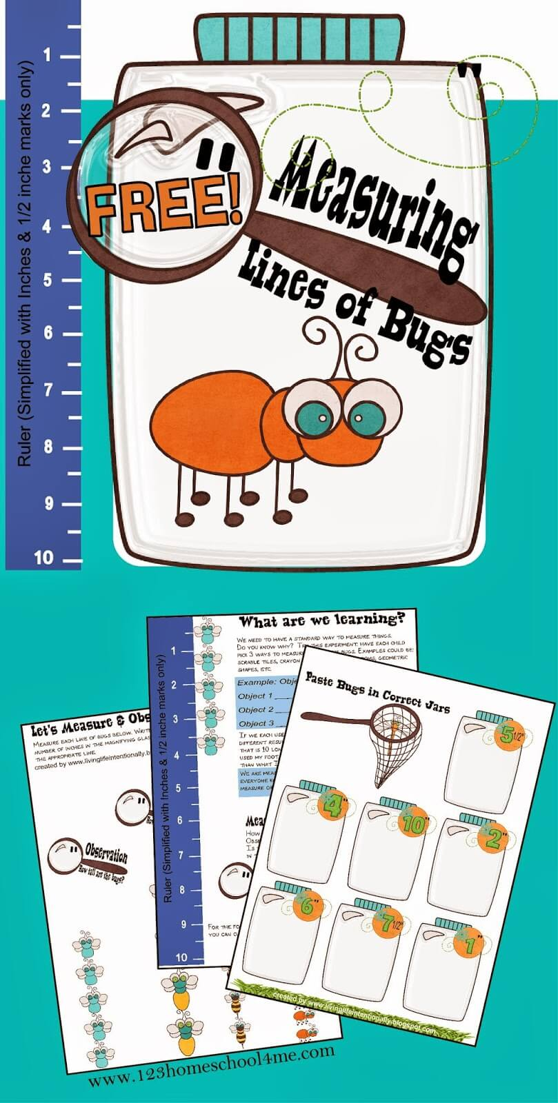 hight resolution of FREE Measuring Bugs