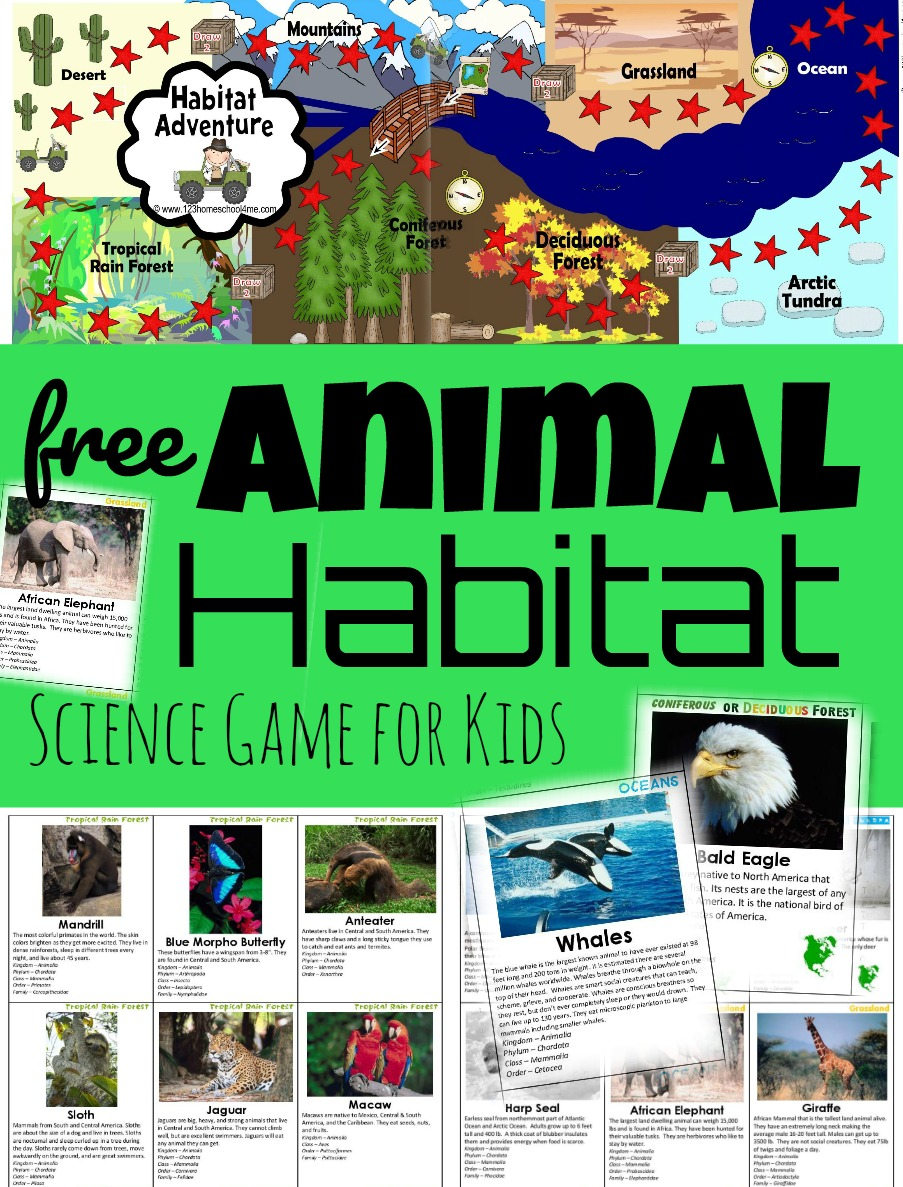 medium resolution of FREE Habitat Game – Exploring Biomes