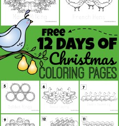 FREE 12 Days of Christmas Coloring Pages [ 1444 x 1024 Pixel ]