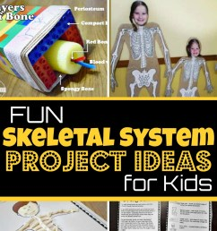 EPIC Skeletal System Projects Ideas for Kids [ 1071 x 1024 Pixel ]