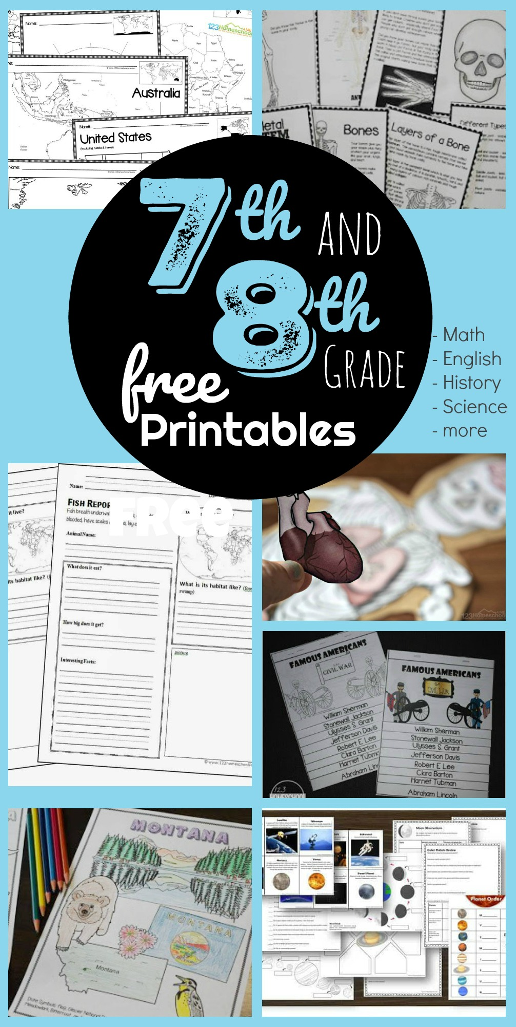 hight resolution of FREE 7th \u0026 8th Grade Worksheets