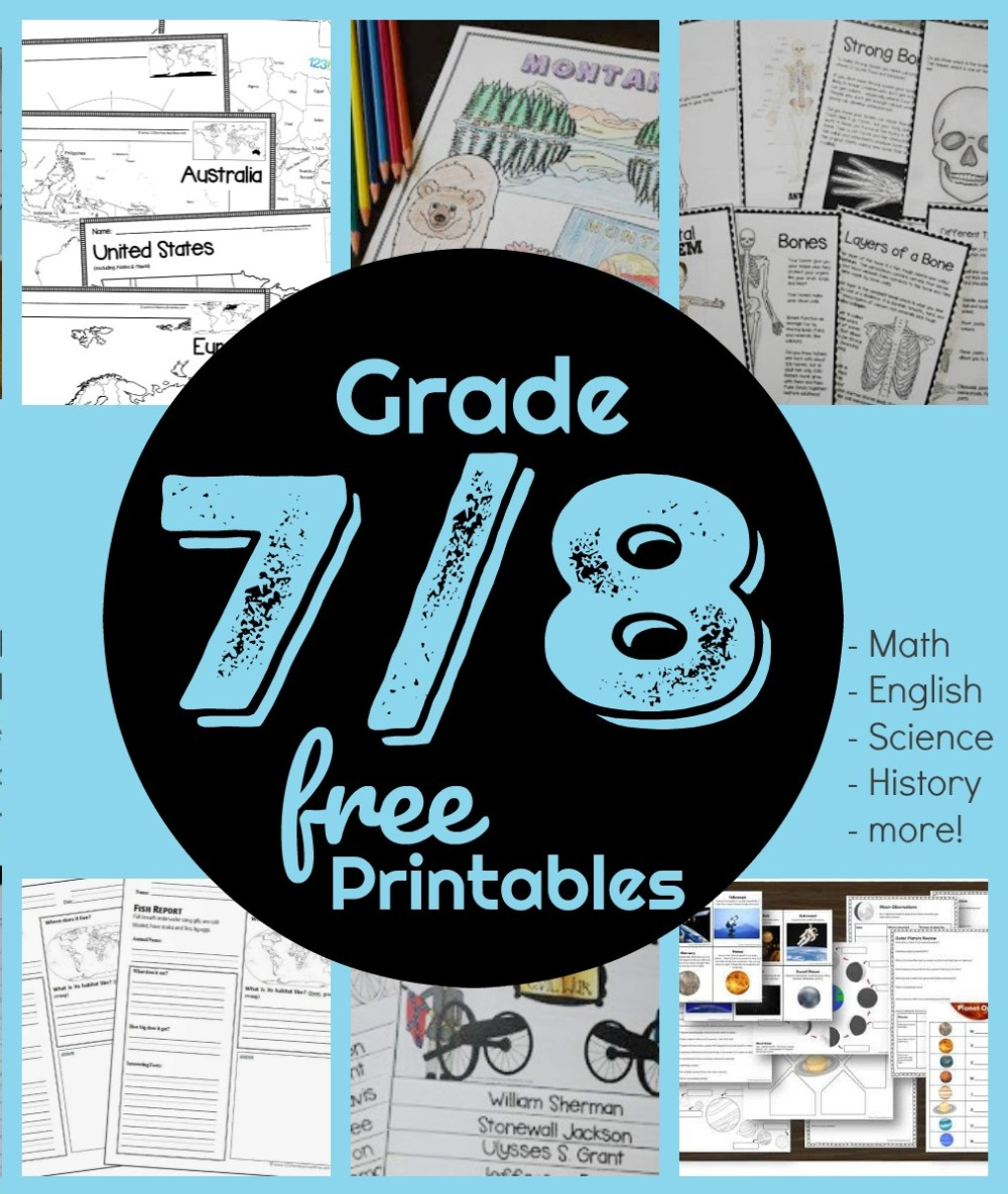 medium resolution of FREE 7th \u0026 8th Grade Worksheets