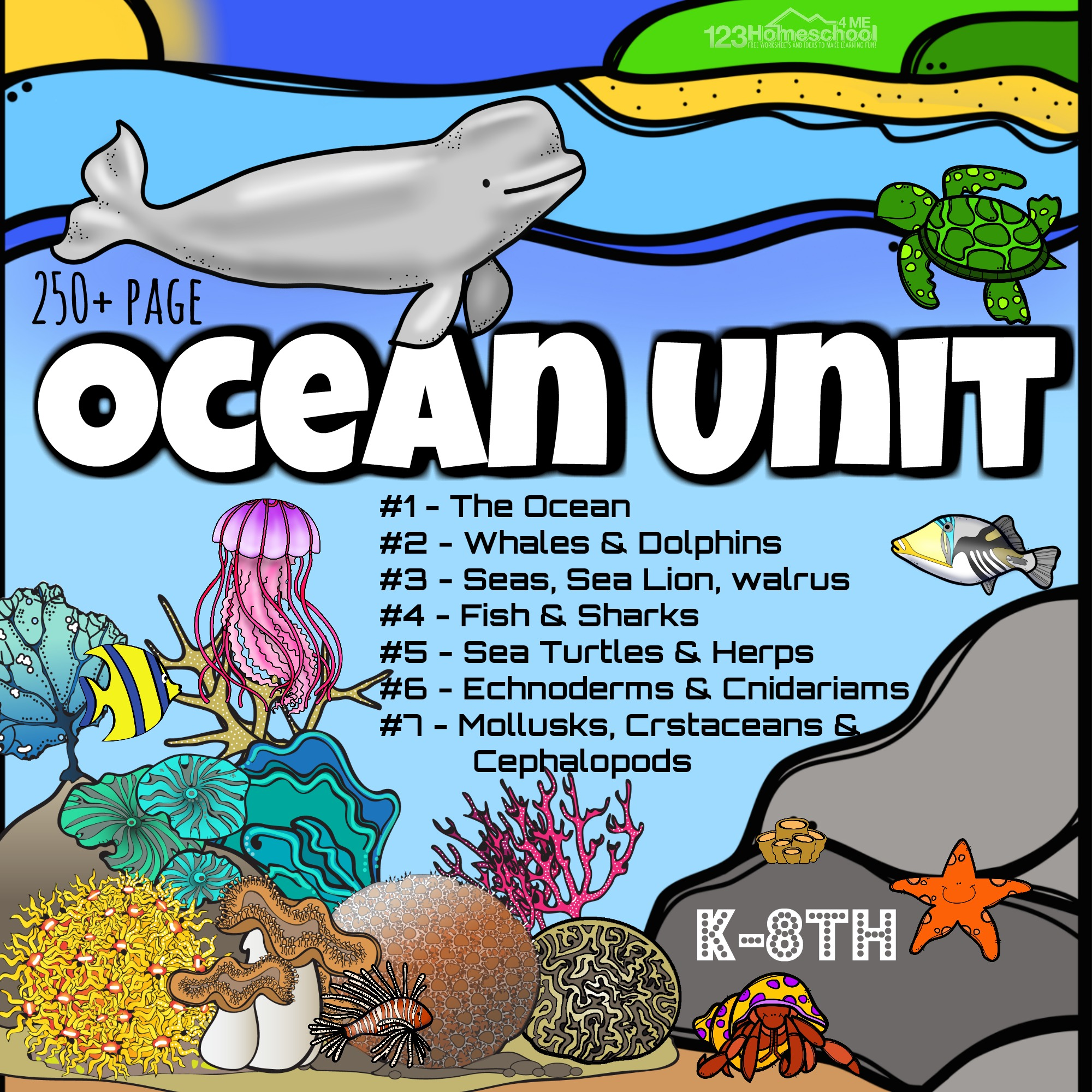 hight resolution of HUGE Ocean Animals Lesson