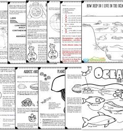 Ocean Animals UNIT   123 Homeschool 4 Me [ 1024 x 1116 Pixel ]