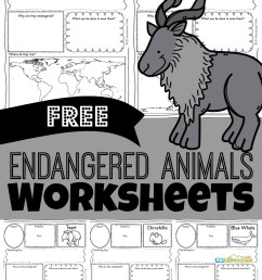 FREE Endangered Animals Worksheets [ 1571 x 1024 Pixel ]