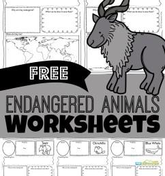 FREE Endangered Animals Worksheets [ 1571 x 1024 Pixel ]