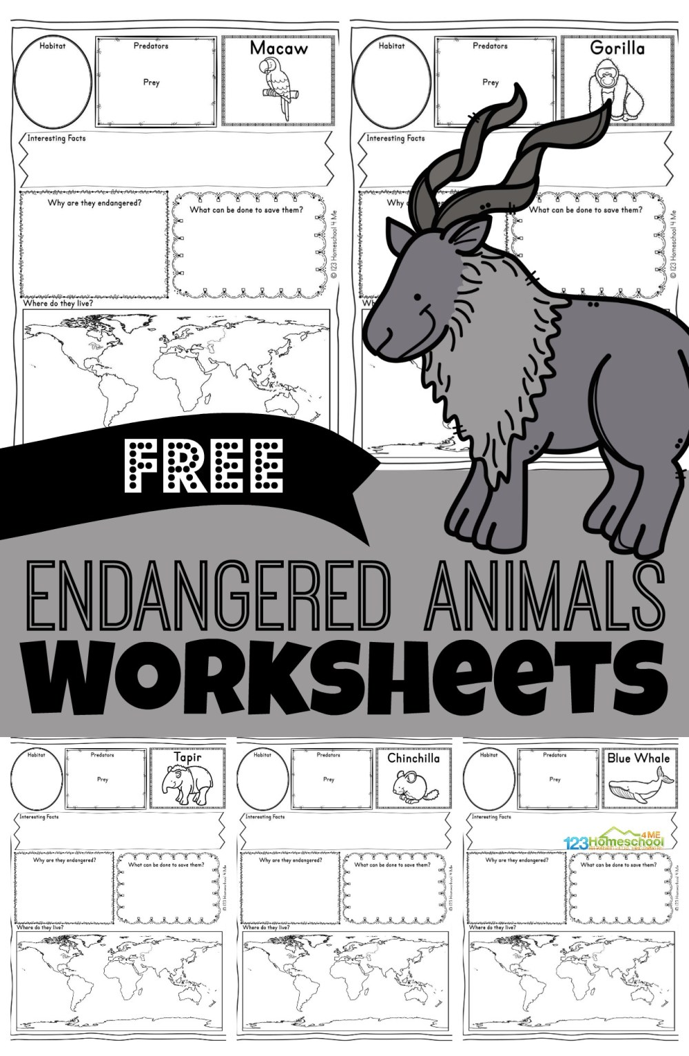 medium resolution of FREE Endangered Animals Worksheets