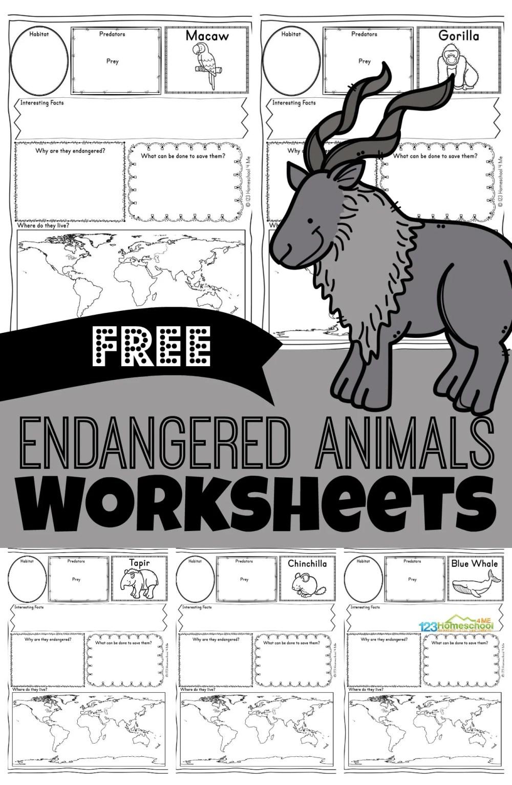 medium resolution of FREE Endangered Animals Worksheets