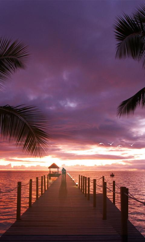 Iphone Wallpaper Cute Couple Romantic View Of Sunset