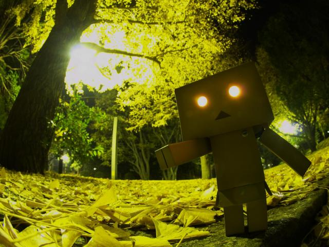 Cute Girl Phone Wallpapers Danbo In Forest