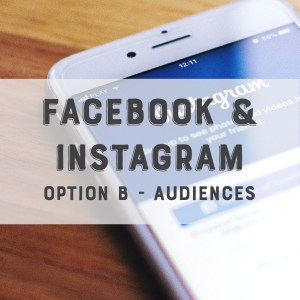 Facebook / Instagram Option B Look a Like Audiences Feature