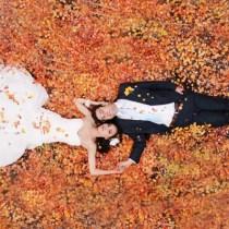 Fall wedding theme ideas123WeddingCards | 123WeddingCards