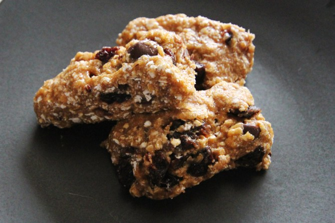 naked oatmeal chocolate chip protein bar recipe