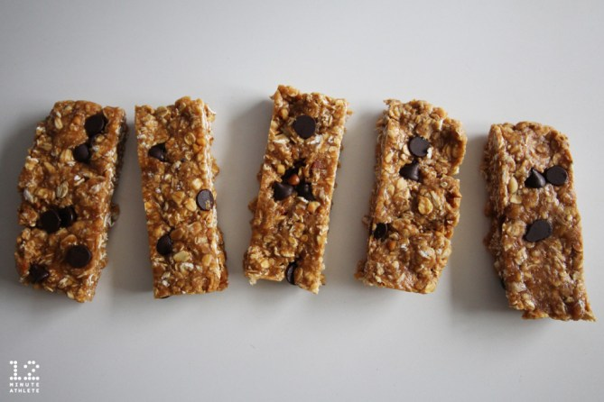 oatmeal peanut butter chocolate chip protein bar recipe