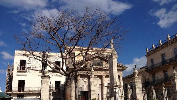 Image result for foto ceiba del templete