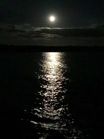 Moonlight over Sand Cove
