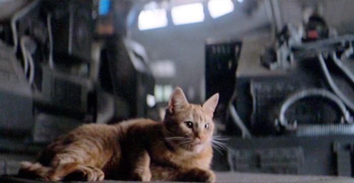 Fig. 8: Jonesy – en dramatisk rekvisit i den første Alien-film.
