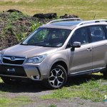 forester64