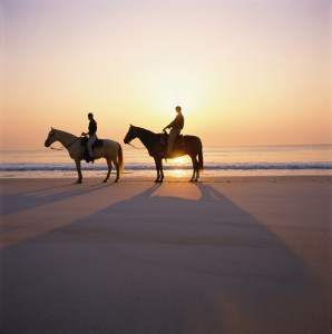 Trot on horseback along the shore with a Kelly Seahorse Ranch ride.