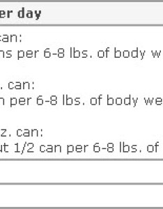 Wellness canned cat food also formula petmeds rh