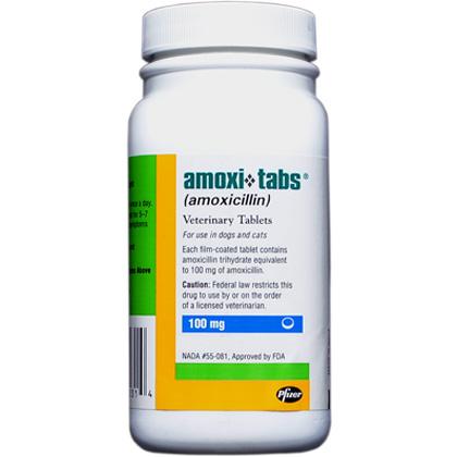 Amoxicillin Over The Counter Walmart - Amoxicillin (Amoxil ...