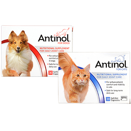 Antinol for Dogs and Cats | Pet Joint Supplement - 1800PetMeds