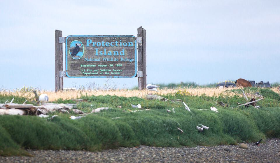 protection island