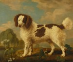 Dogs of the 18th Century
