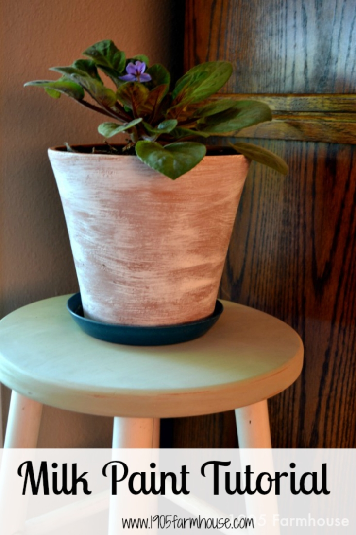 Walk through my first experience with milk paint and learn the mistakes I made and some tips for beginners