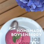 An above photo of boysenberry ice cream with text overlay