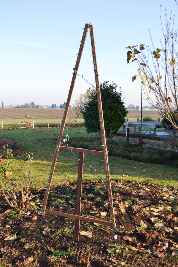 A triangle wood frame with Christmas lights attached stuck into a flower bed