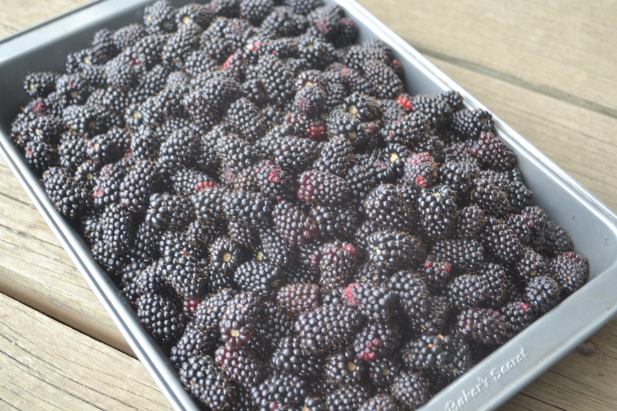 A tray of fresh berries sitting on a wood tabletop