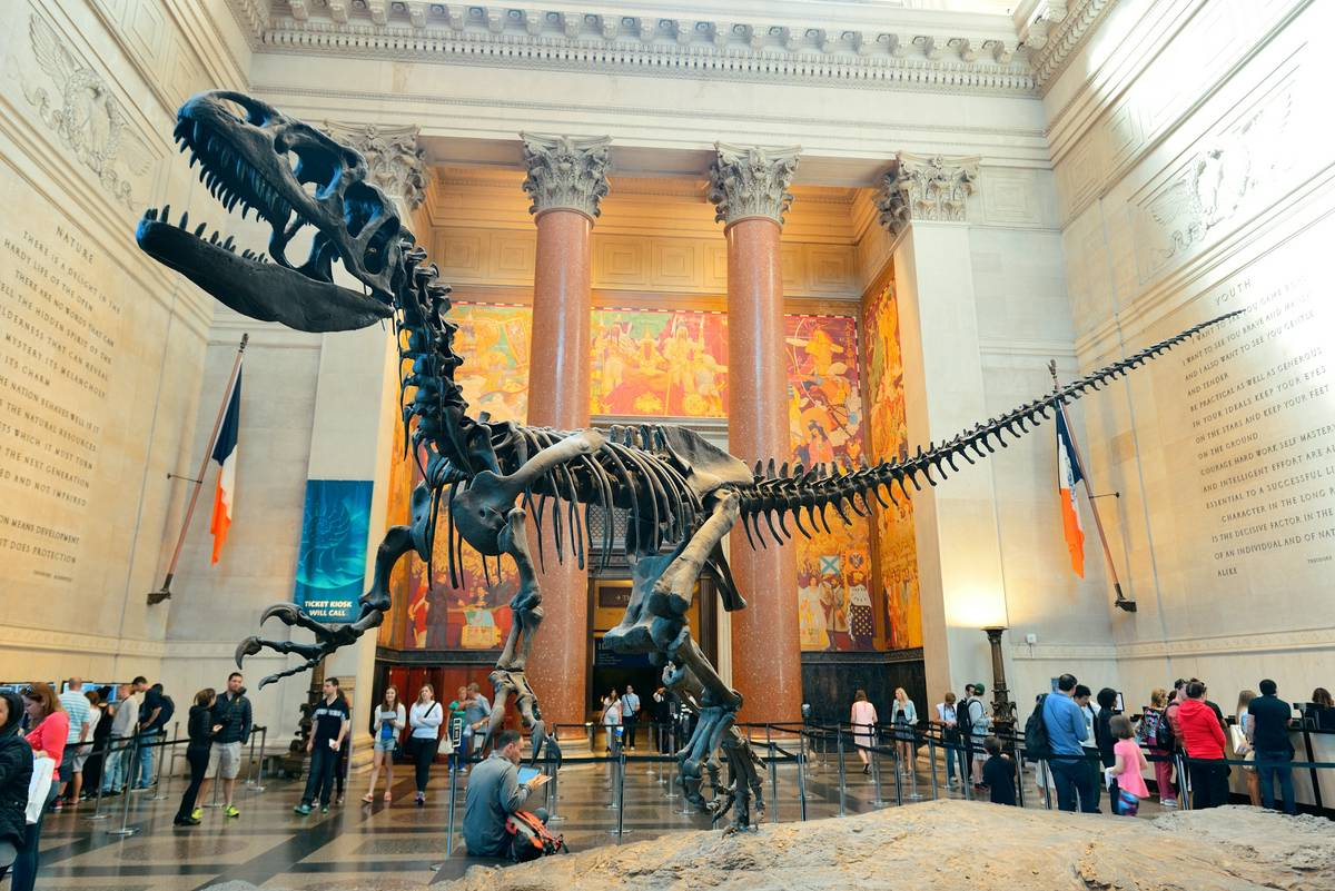 The lobby at AMNH - another place the Mercer family doesn't belong