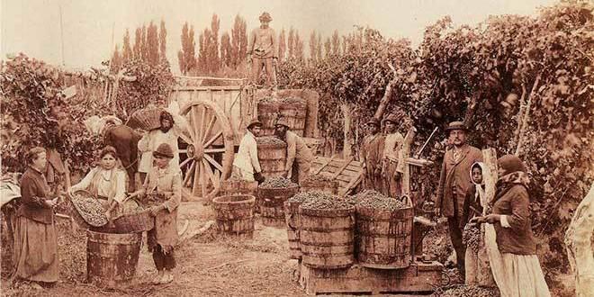 Histoire du magonisme et de l'anarchisme au Mexique – Part IV: Le champ et la ville
