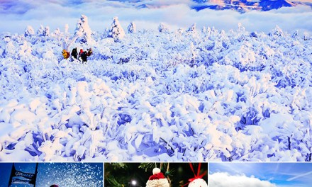 Expats Guide Korean Winter Festivals