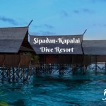Fearless at the Beautiful Sipadan-Kapalai Dive Resort