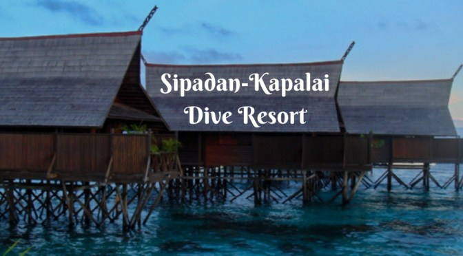 1adventure traveler an expats adventure - Kapalai sipadan dive resort ...