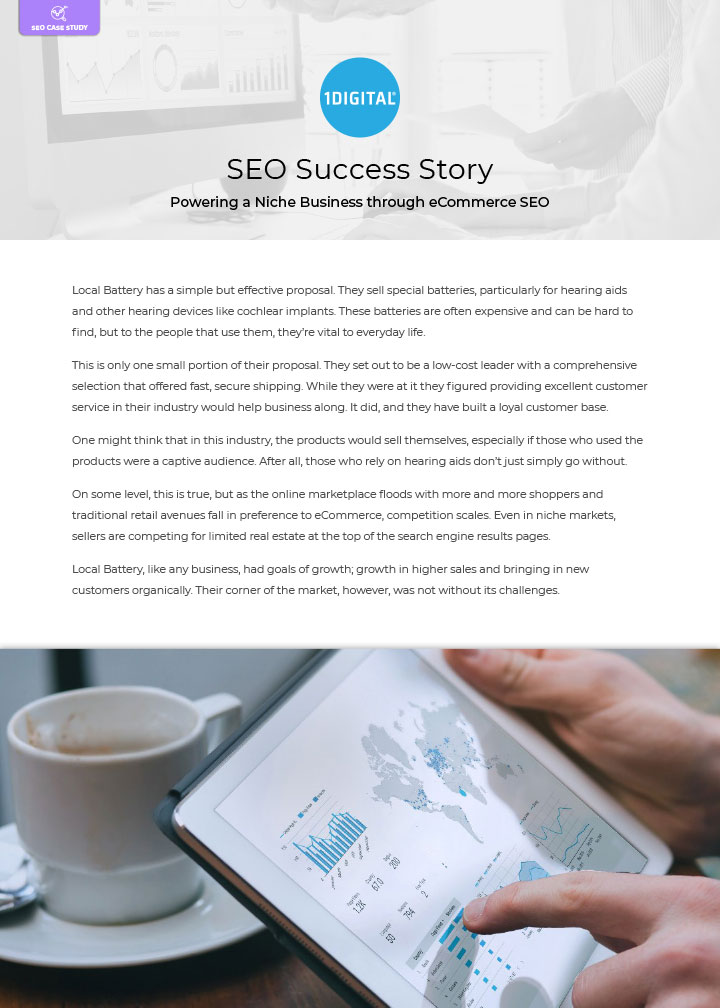 Powering a Niche Business through eCommerce SEO